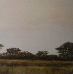 Afrika-B.jpg